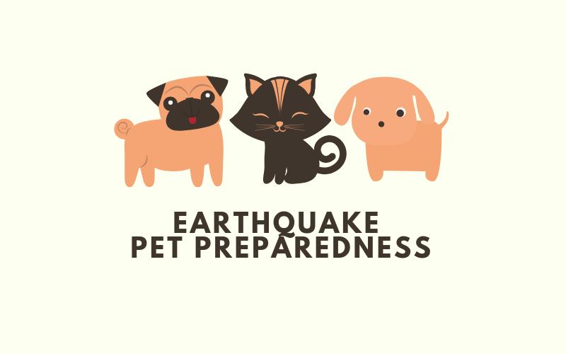 image for Earthquake Pet Preparedness